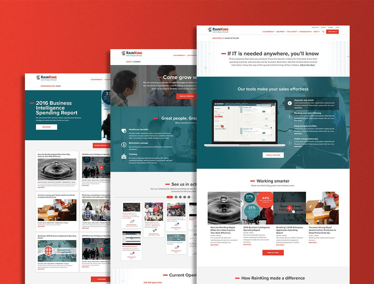 Web designers optimized RainKing's UX and UI for their website redesign, as seen in these screens of the site.