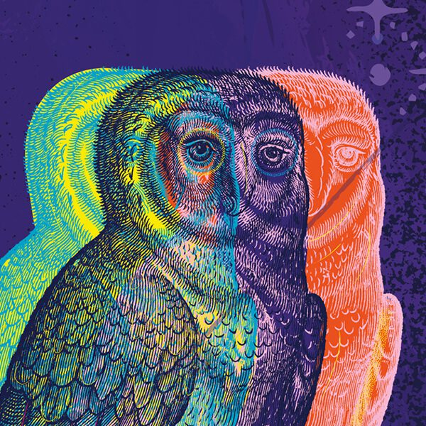 A image of 3 owls in yellow, purple and orange for Folger Theatre